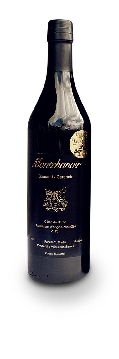 Montchanoir